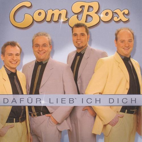 Dafür lieb ich dich - Combox cover art
